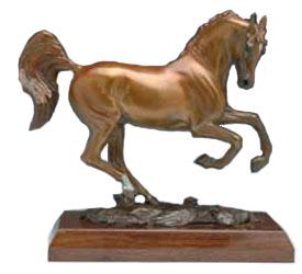 Arabian Stallion Image