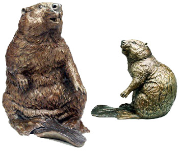 The Beaver Image