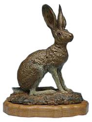 Black Tail Jack Rabbit Image