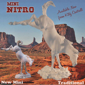 mini_nitro