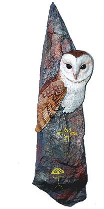 Barn Owl Image
